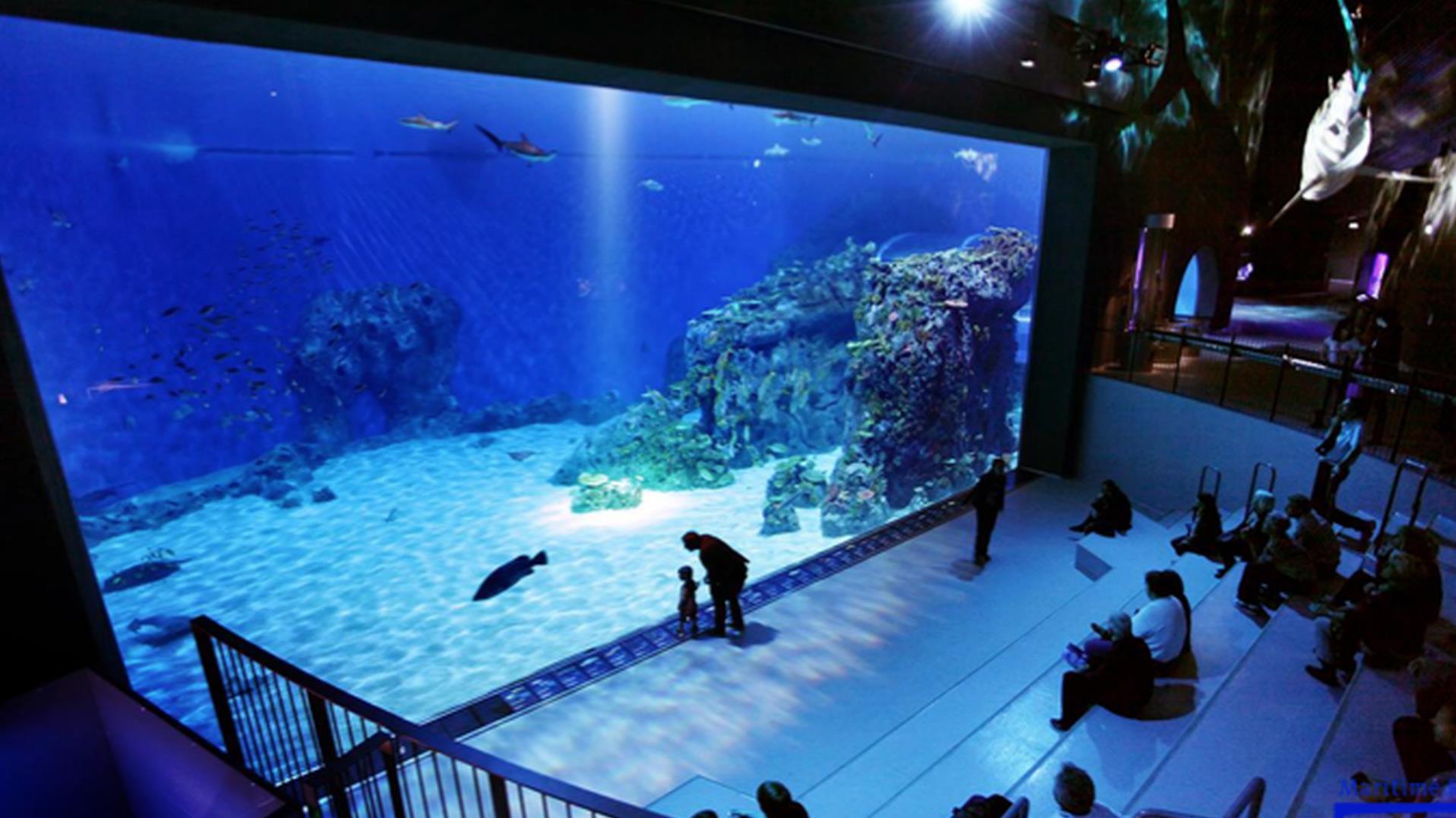 u0026#39;Wrak Kogge bij Kampen in aquarium onder water u0026#39;