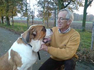 Hondenbelasting Raalte afgeschaft