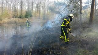 Brandweer blust brand in Burchtbos