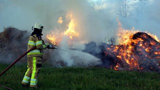Rietbrand in Rouveen