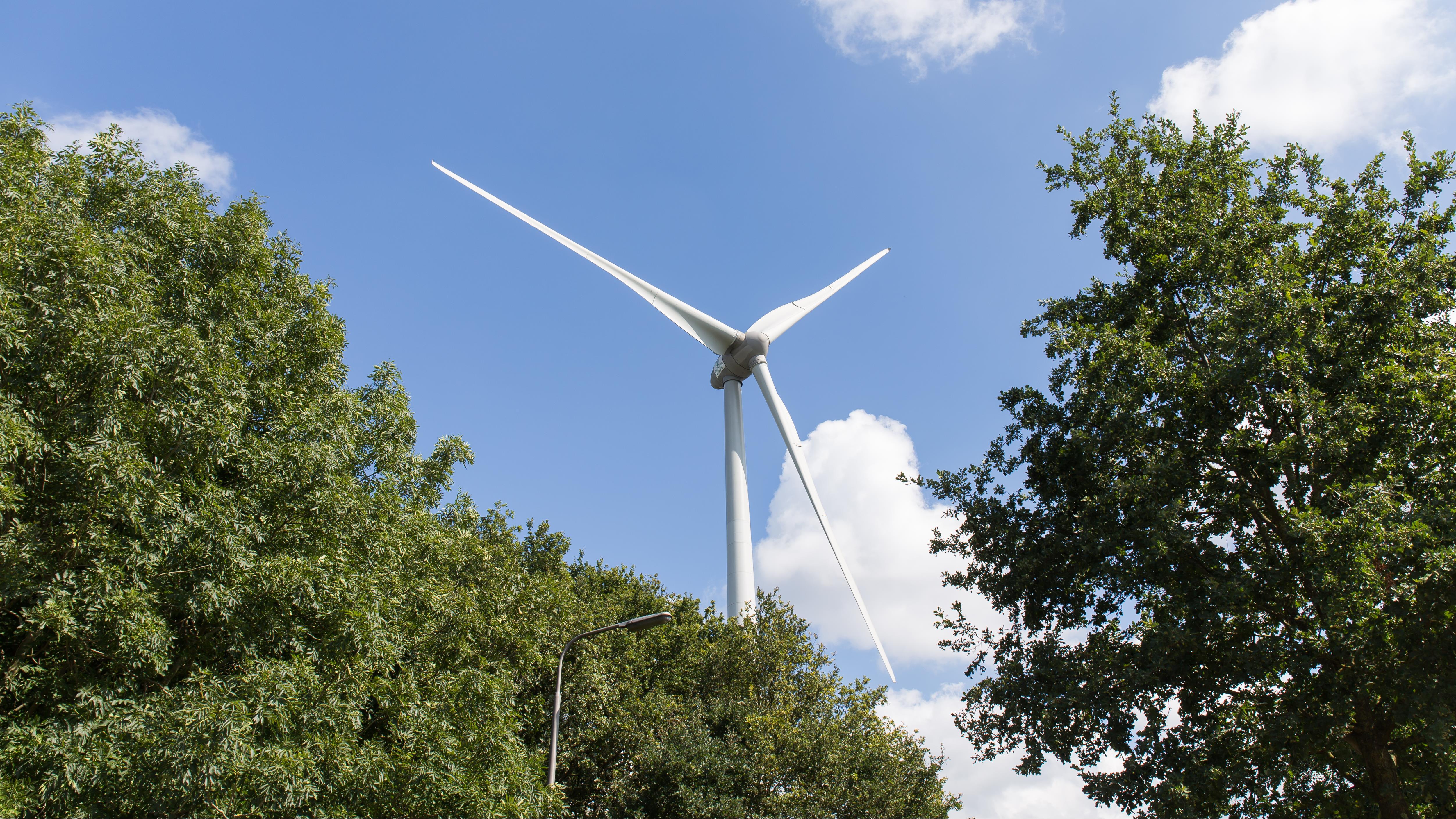 Lokale coöperatie heeft geld binnen voor bouw van twee windmolens in Nieuwleusen