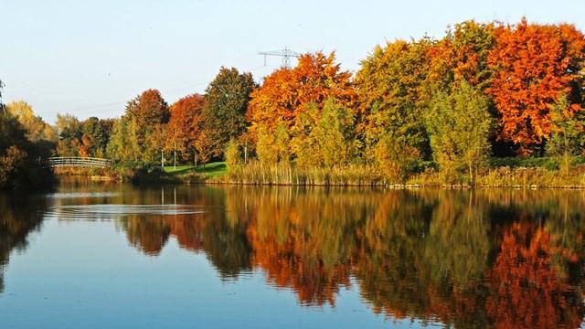 Het park in Wierden - fotograaf: Marijke Lemmens