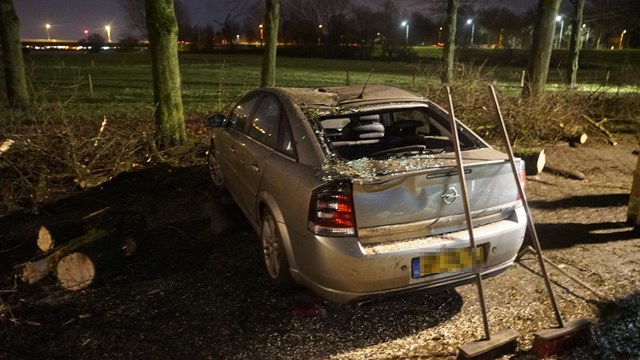 Boom waait op auto in Deventer - fotograaf: News United / Rens Hulman