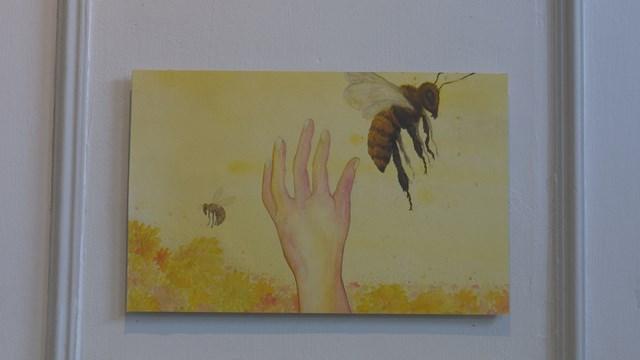 Teloorgang insectenpopulatie akelig actueel in expositie Helen Abma - fotograaf: Inga