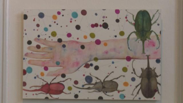 Teloorgang insectenpopulatie akelig actueel in expositie Helen Abma - fotograaf: RTV Oost