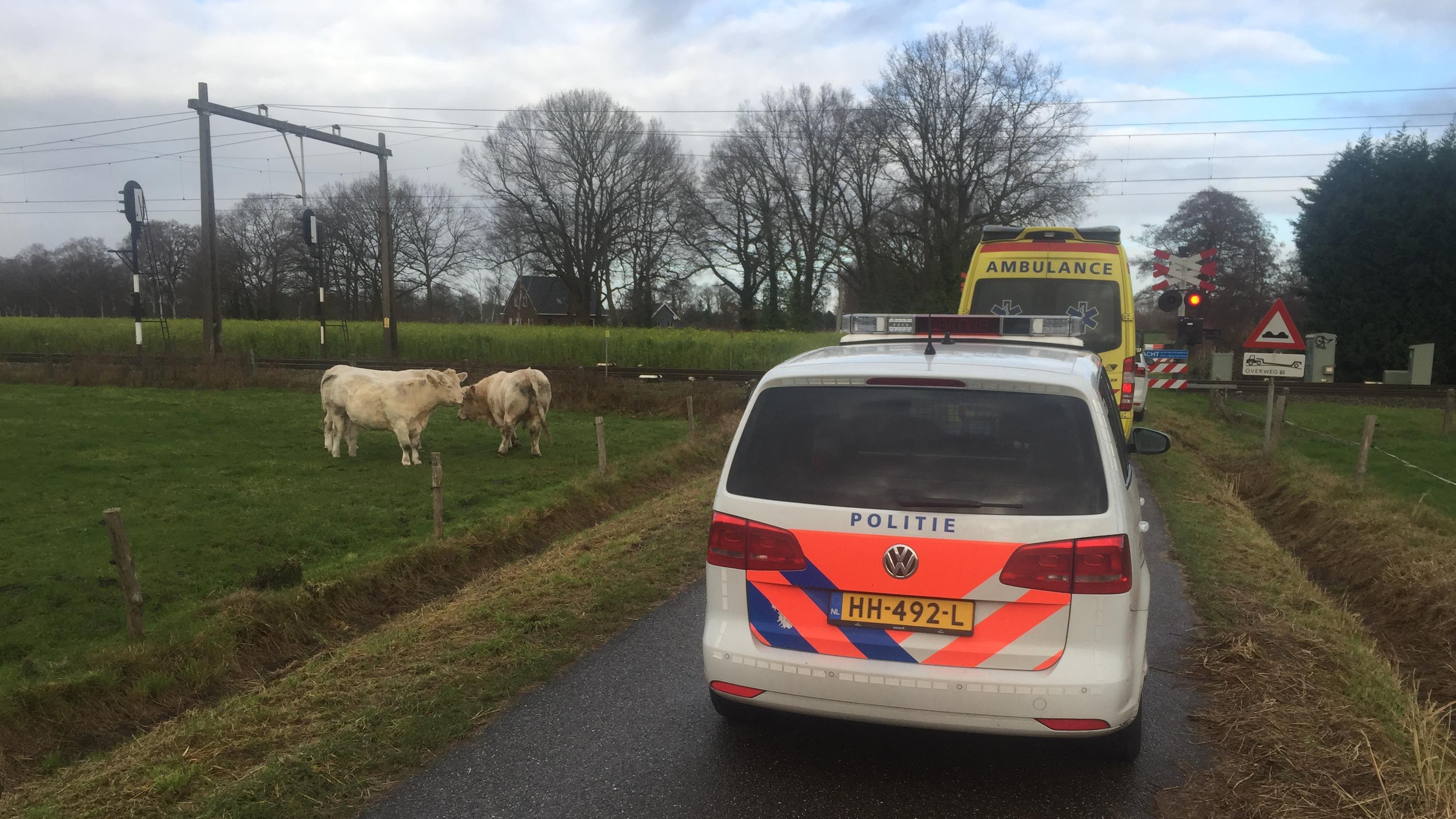 Treinverkeer tussen Deventer en Rijssen hervat na aanrijding met een persoon.