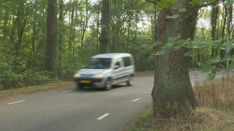 Voorlopig geen vangrail in bocht bij ongelukkenboom Ommen.