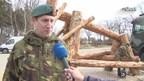 Overijsselse militairen bouwen houten mammoet in Drenthe