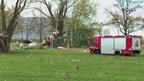 Man valt uit boom in Zwolle