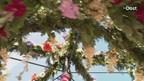 Pinksterbruidjes in Borne