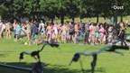 Kind overleden bij Wijthmenerplas Zwolle