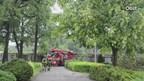Bomen bij verzorgingshuis in Almelo geveld door hevige bui