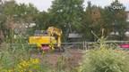 Illegale moestuin mag op bouwgrond van gemeente Zwolle