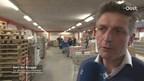 Reportage Ter Brugge Geschenken