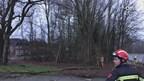 Stormschade aan bomen in Ootmarsum