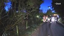 auto komt tot stilstand tegen boom bij Enschede