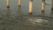 Zwemmen in rivieren is gevaarlijk