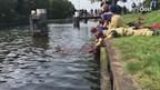 Brandweer redt paard uit het kanaal in Aadorp