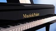 Muziekpalet