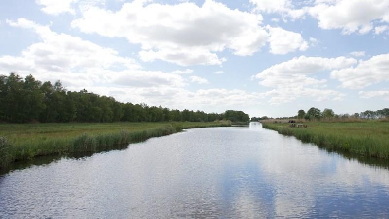 Mag Weerribben-Wieden zich straks 'mooiste natuurgebied van Nederland' noemen?