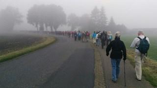 Sallandse Wandelvierdaagse in Raalte