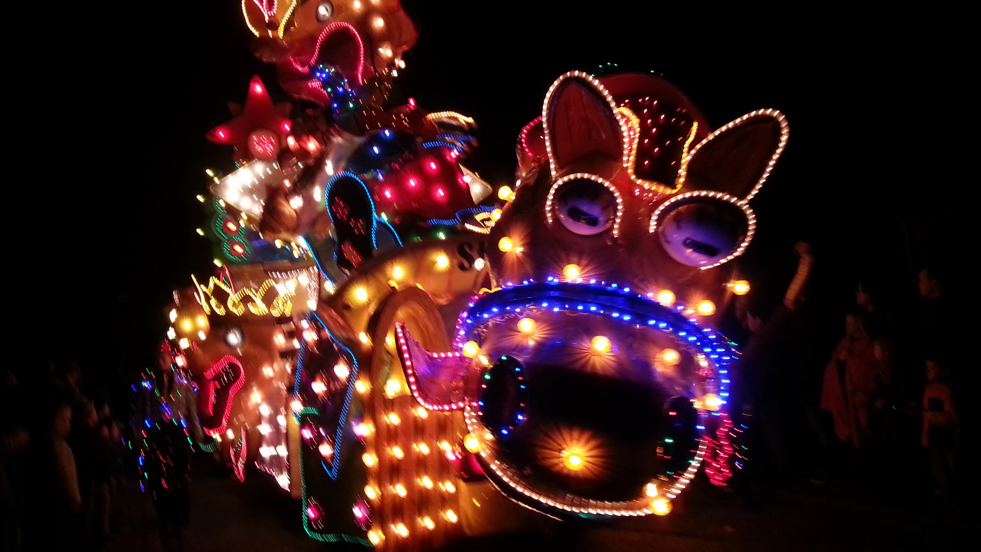 Beautiful Verlichte Carnavalsoptocht Pictures - Trend Ideas 2018 ...