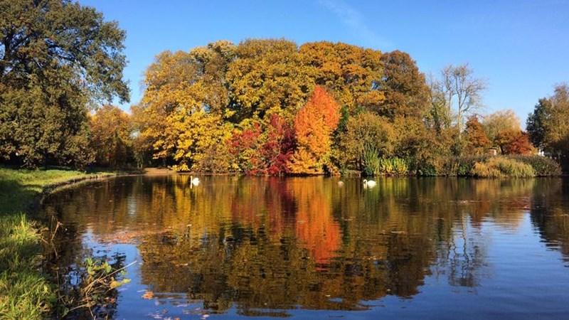 Fotografen genieten van herfst in Het Engelse Werk