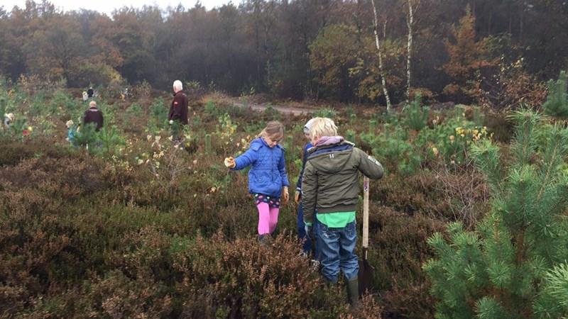 Landschap Overijssel wil mensen 'kietelen' tijdens landelijke Natuurwerkdag
