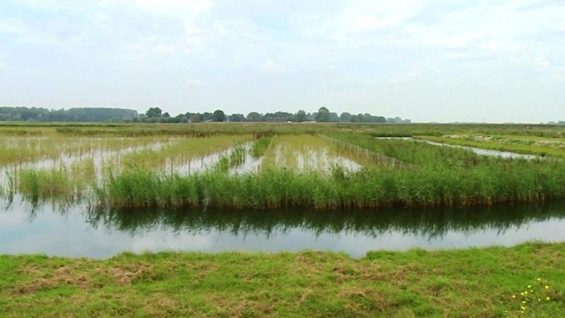 Mogelijk toch volledig bevaarbare bypass bij Kampen