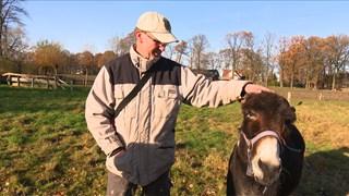 Peter IJsseldijk met ezel Jeffrey