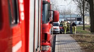 Overleg na bevrijding van toekan in Zwolle