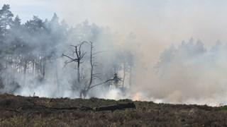 Natuurbrand bij Beuningen Denekamp