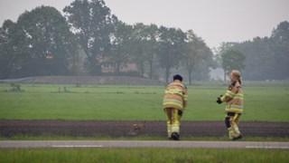 Brandweer helpt ree een handje