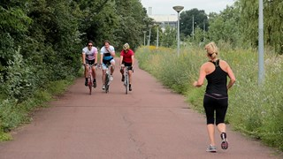 Wielrenners op het fietspad