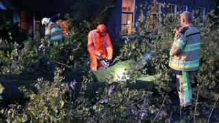 Beschadigde boom valt om in Lettele