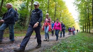 Over drie weken begint de Sallandse Wandelvierdaagse weer