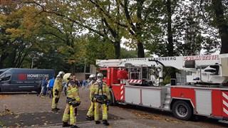 Brandweer verwijdert takken uit boom bij school