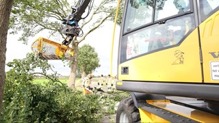 Graafmachine haalt omgevallen boom van de weg