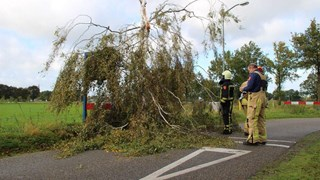 Boom geknakt in Albergen