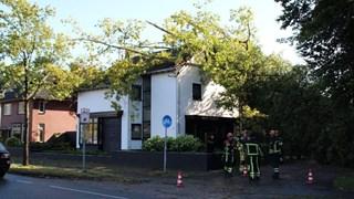 Boom valt op huis in Albergen