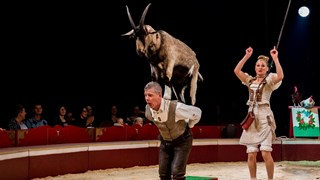 Internationaal Circusfestival Enschede