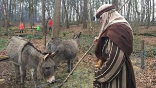 Herders houden de wacht