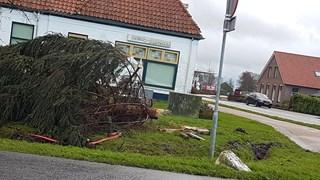 Kerstboom gesneuveld in De Meenthe
