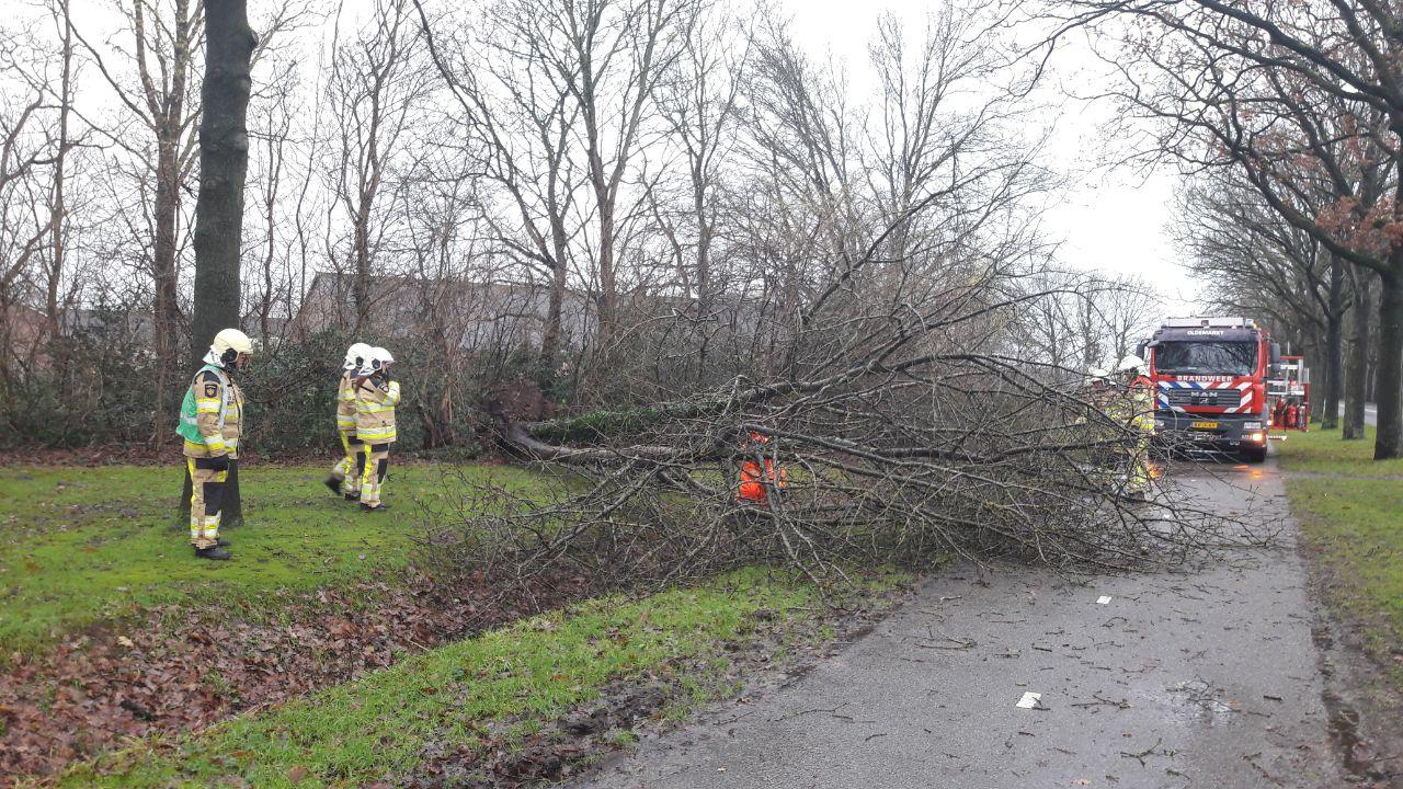 Lees terug: de eerste storm van het jaar raasde over de provincie