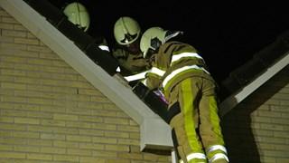 Brandweerlieden weten de kat onder de dakpannen vandaan te halen