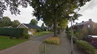 SP en PvdA Goor willen extra raadsvergadering over kap van bomen aan Gondalaan