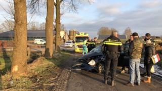 Auto tegen boom in Beerzerveld