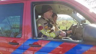 Een brandweerman houdt de eend warm in afwachting op de komst van de Dierenambulance