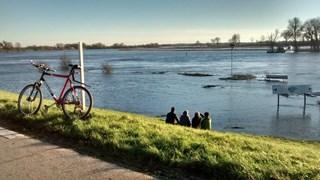 Hoog water IJssel bij Zwolle