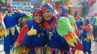De Grote Twentse Carnavalsoptocht in Oldenzaal